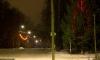 Улицы и деревья постепенно «зажигают» праздничные огни. Фото: kalashnikovo.ru