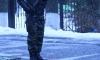 Гражданско-патриотическая акция «Снежный десант - 2014». Фото: Александр Иванов