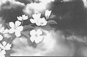 Валерий МАКАРЕВКИЙ: «Ласковый май»