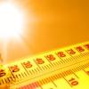 В ближайшую неделю на территории Тверской области ожидается аномально-жаркая погода