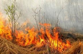 В Лихославле установлен особый противопожарный режим