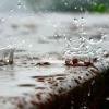 МЧС Тверской области объявило на ближайшие 3 часа штормовое предупреждение