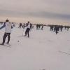 Тихо лыжами шурша