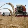 В Тверской области началась заготовка зерновых