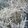В среду в Лихославле будет солнечно, ожидаются заморозки до -2