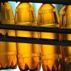 В России с 1 января 2016 года запретят пиво в пластиковых «полторашках»