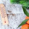 Вместе с Новым годом в Тверскую область придет резкое потепление