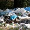 В Лихославльском районе землевладелец оштрафован за свалку и сорняки на участке