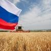 Торжокский колхоз «Мир» первым в области завершил уборку урожая