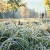 В Тверской области ожидаются заморозки до -3 градусов