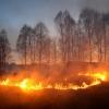 В России запретили выжигать сухую траву