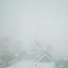 На Тверскую область обрушилась сильнейшая снежная буря