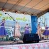 Программа празднования Дня Лихославльского района и Дня города Лихославля – 2016