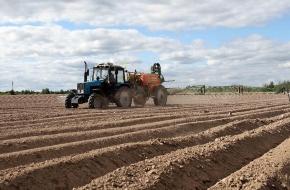Лихославльский район решает задачи продовольственной безопасности (фото)