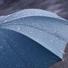 21 июля в Тверской области ожидаются сильные дожди с грозами