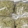 В Спирово изъяли крупную партию марихуаны (фото)