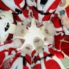 25 декабря в Лихославльском районе пройдет фестиваль «Парад дедов Морозов»