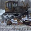 В Твери в рамках ответных экономических санкций уничтожено 1500 килограммов яблок