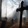 В Спировском районе обнаружены несколько бесхозных кладбищ