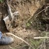 В Тверской области 16-летний свидетель убийства, взял лопату и закопал труп