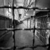 В Торжке свадьба закончилась уголовным делом и 10 годами тюрьмы