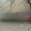 Днем в деревне под Торжком сгорел жилой дом (фото)