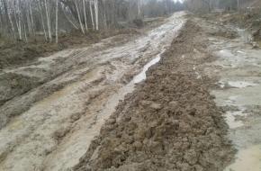 На ремонт «дороги-болота» под Торжком власти потратили целый самосвал щебня (фото)