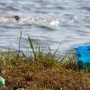 В деревне под Торжком в пруду тонула 3-летняя девочка