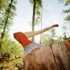 В Лихославльском районе «черные лесорубы» украли почти 250 деревьев