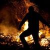 Лесозаготовитель оставивший после себя бардак в Торжокском районе заплатит штраф