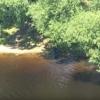 В Твери молодая девушка спрыгнула с моста в реку и разбилась (видео)