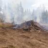 Торжокские пожарные со спутника засекли сжигание веток в лесу