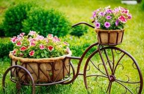 В Торжке выберут самый благоустроенный двор