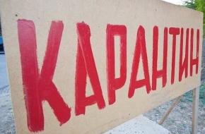 В части Лихославльского района введен карантин по бешенству животных