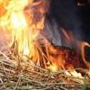 Под Лихославлем сгорел ангар с сеном