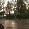 После урагана жители Торжка вышли на вечерне-ночной субботник