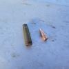 В Тверской области из автомата расстреляли дом с семьёй. Более 60 выстрелов угодили в цель (фото)
