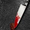 Жителю Спирово из-за котенка воткнули в живот нож