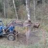 Под Торжком спасли лося, запутавшегося в металлической сетке (видео)