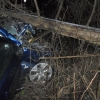 В Спировском районе столкнулись легковушка и грузовик, есть пострадавшие (фото)