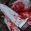 Житель Тверской области рассказал как убил своего знакомого и отрезал ему голову (видео)