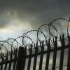 Лихославльский «любитель травки» проведет за решеткой три года