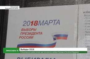 В Лихославльском районе активно идет голосование на выборах Президента Российской Федерации (видео)