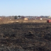 В Тверской области начался неконтролируемый пал сухой травы