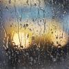 На Тверскую область надвигаются проливные дожди