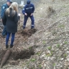 Под Торжком обнаружены два взрывоопасных снаряда (фото)