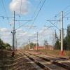 Под Тверью поезд сбил лося, задерживается прибытие более 10 электричек