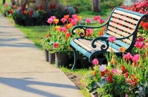 В Каве обустроят парковую зону отдыха с асфальтированными дорожками, скамейками и газонами