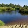 В деревне под Торжком в реке утонул ребенок