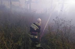 В Лихославльском районе сгорел склад с сеном (фото)